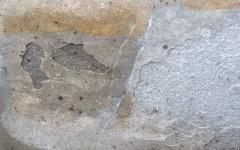Gris Foussana limestone frost damage detail