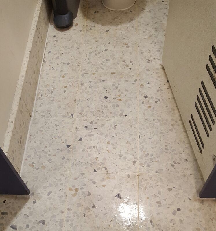 Restoration of a terrazzo floor - after cleaning