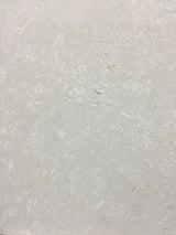 Avy French limestone - Avy blanc brushed - detail